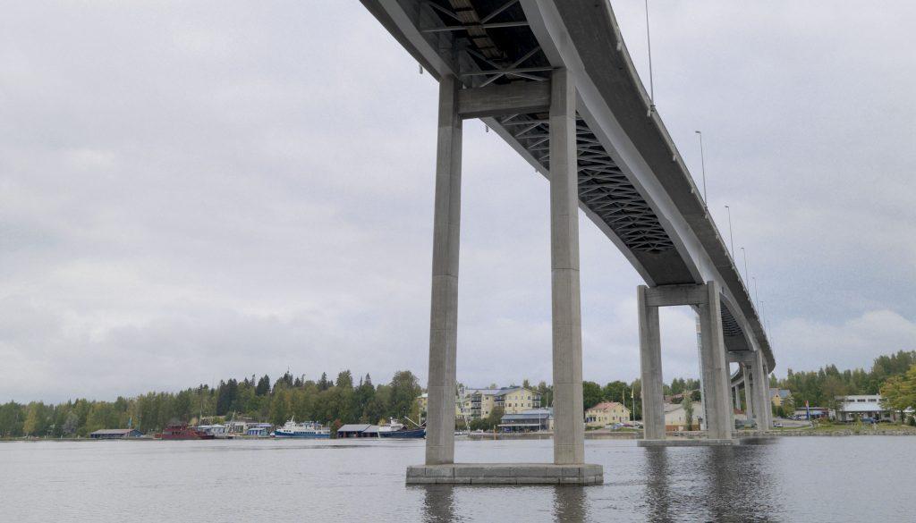 segm_struc_bridge_puumal ( 1 )